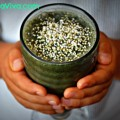Super Spirulina Viva Smoothie
